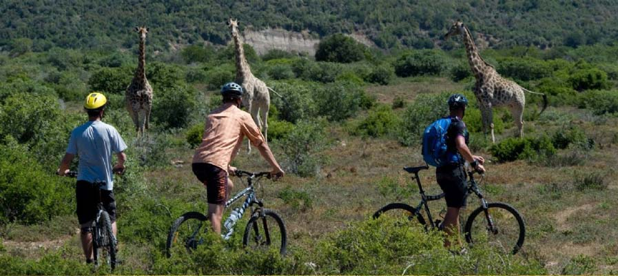 mountain_bike_safari_tanzania