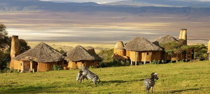 ngorongoro conservation area safari